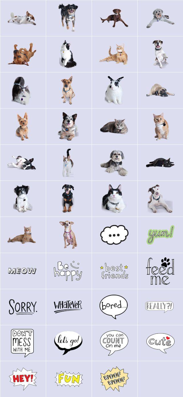 ASPCA pets clipart