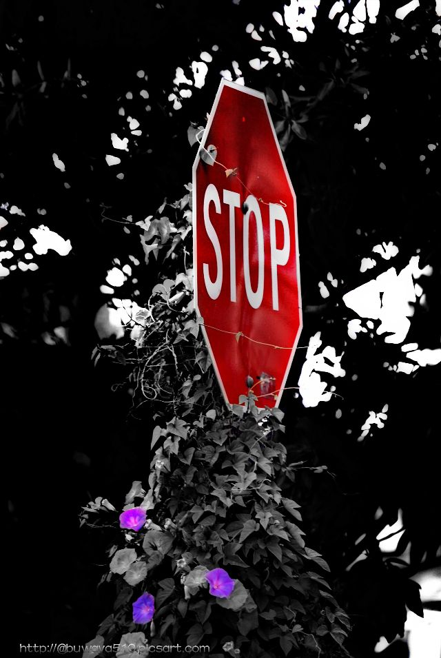 street sign images