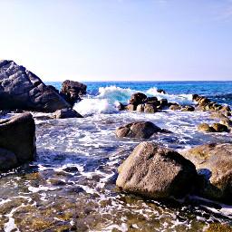 wave summer