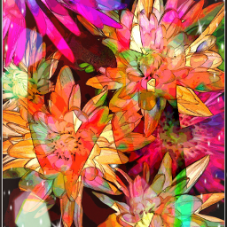 flowers colorful picsart photography