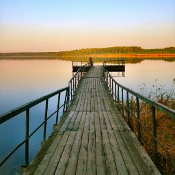 merginglines lake morning
