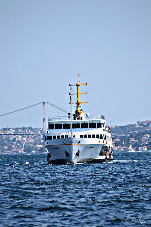 #Steamboat #bosphorusbridge  #travel  #urban  #photography