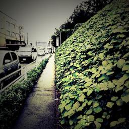 route254 neighborhood