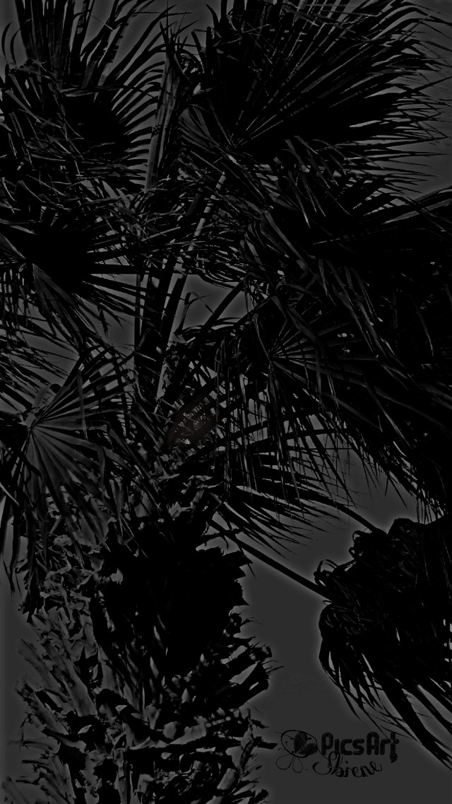 #blackonblack  #hdr #blackandwhite #pencilart #photography #nature #emotions #love #everyday #autumn