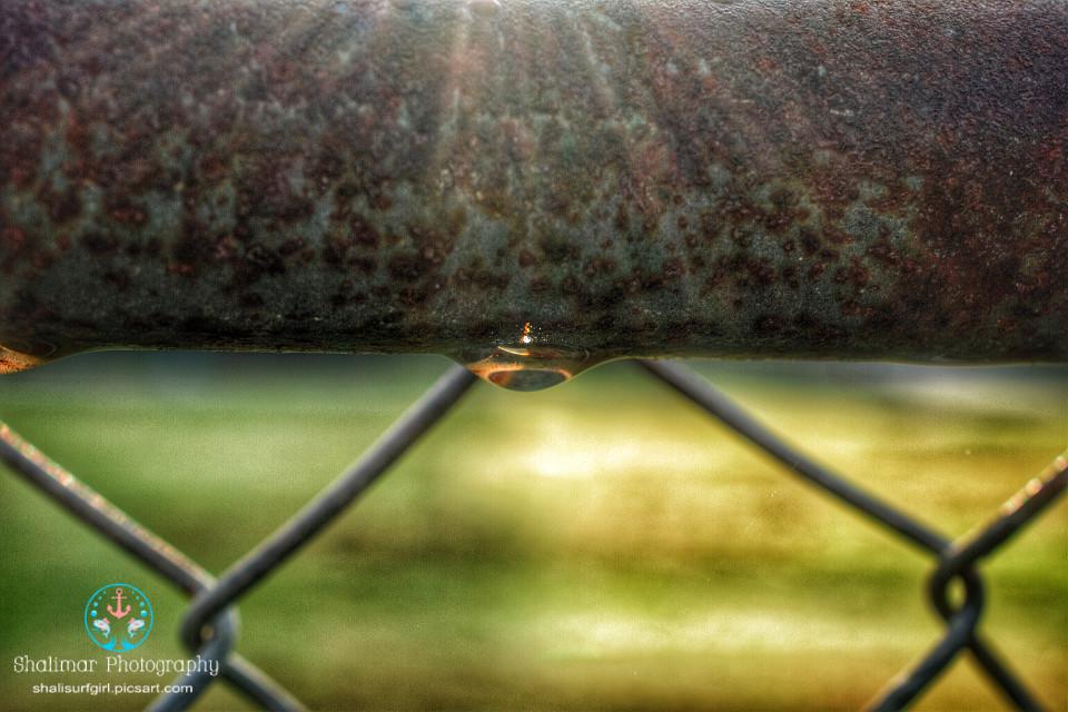 #sunshine #sunrise #waterdrop #raindrop #drop #reflection #sunlight    #metal  #nature #natureaddict #natural #photography #nikonphotographers #nikond5200 #nikonistas #nikonnofilter
