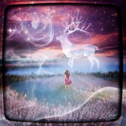 wapdreamscape dream
