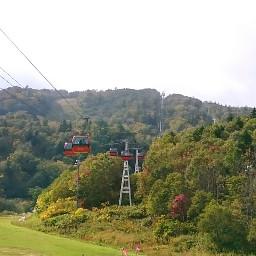 hokkaido autumn coloredleave gondola sapporo