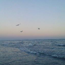 sea beach freedom sunset s
